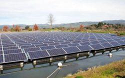 Far Niente Winery Solar Field