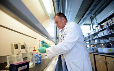 UCR Labs 2017 Maurizio Pellecchia