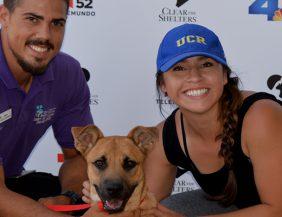Riverside County Pet Adoption