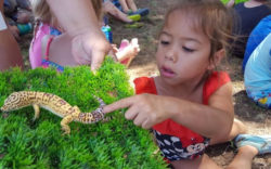Riverside Nature Preschool