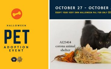 Corona Pet Adoption Event