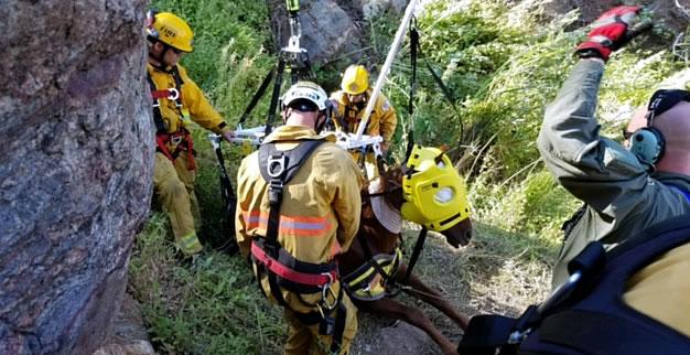 lake-hemet-horse-rescue