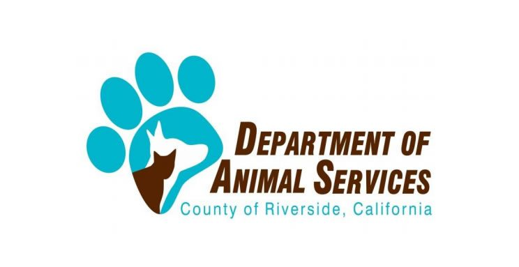Riverside County Department of Animal Services, Pets